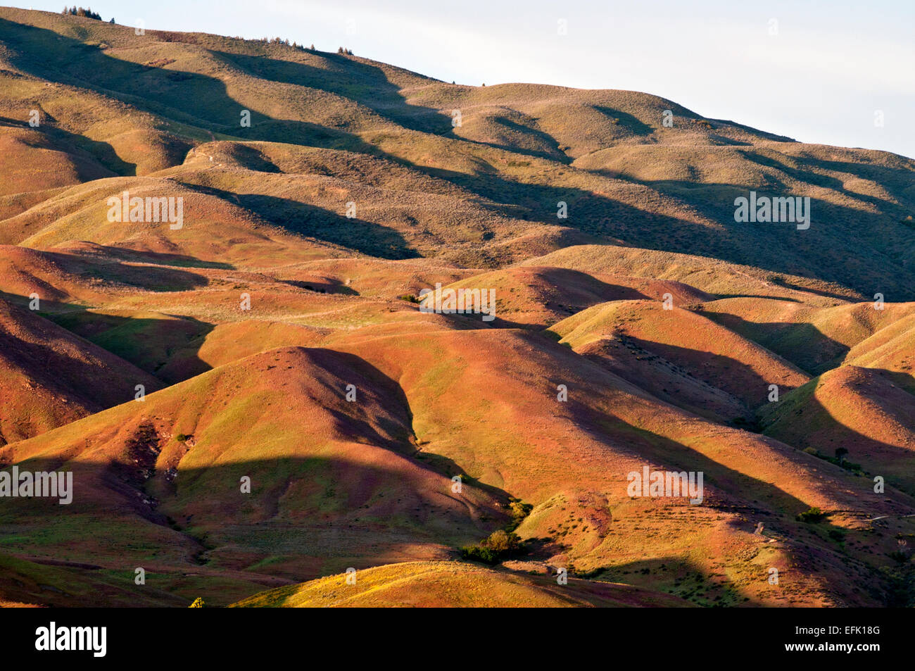 Foothills above Boise Idaho - Stock Image