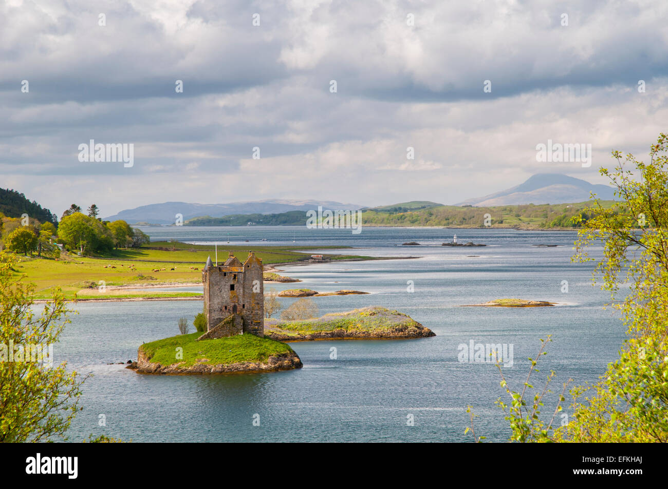 Castle Stalker perched on an island in Loch Linnhe, Argyll, Scotland. May. - Stock Image