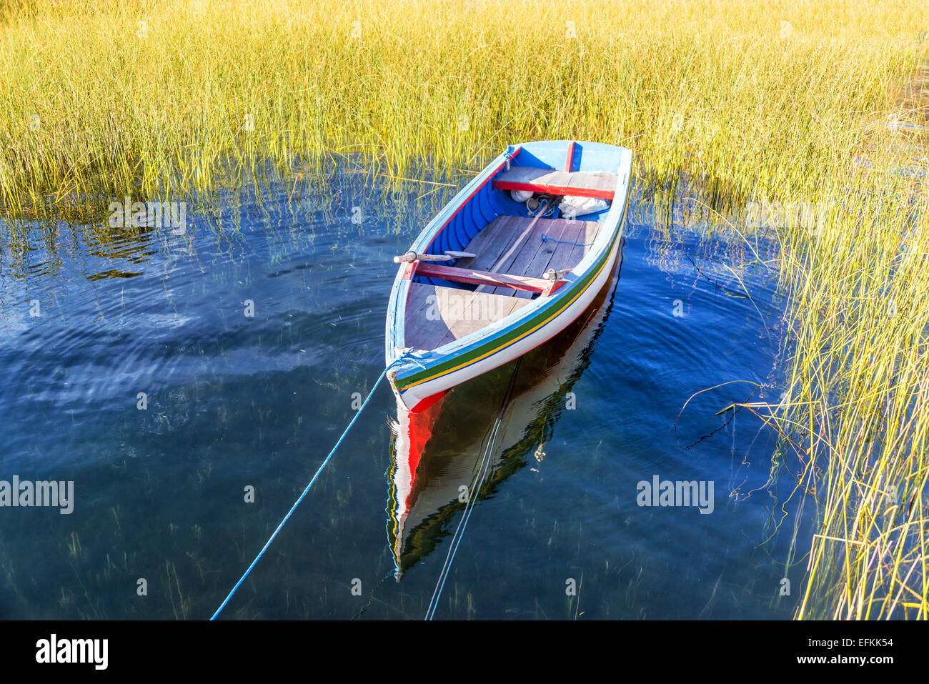 Colorful boat surrounded by reeds on Lake Titicaca near Copacabana, Bolivia - Stock Image