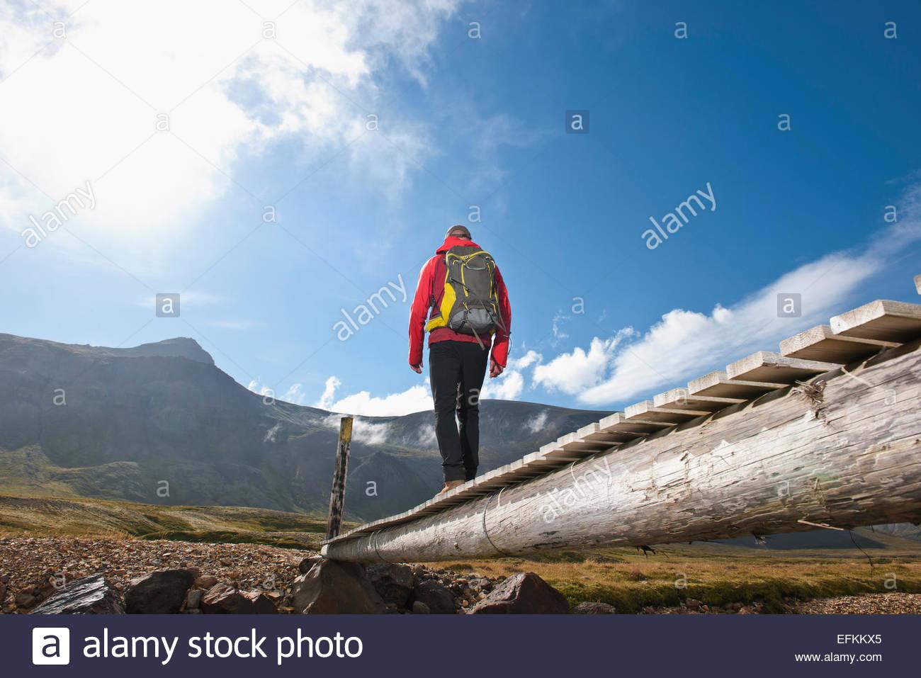 Low angle view of male hiker crossing wooden footbridge, Breidvik, Borgafjordur East, East Iceland - Stock Image
