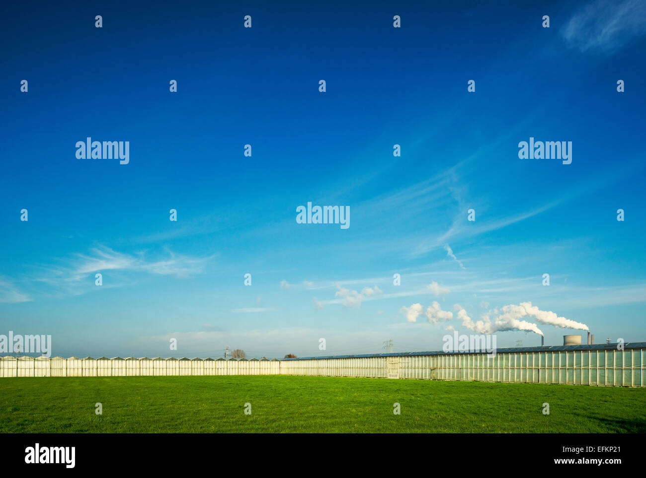 Rows of greenhouses in front of distant power station - Stock Image