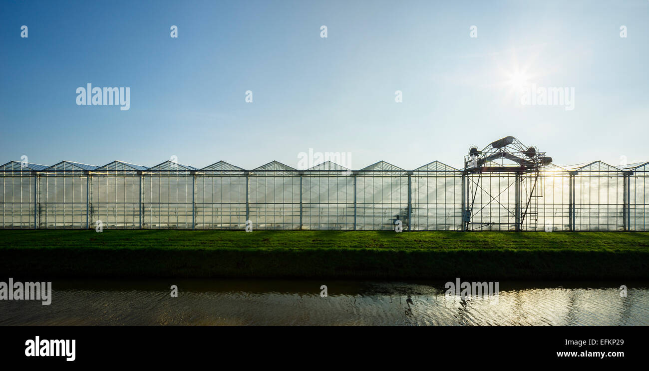 Panoramic view of canal in front of row of greenhouses - Stock Image