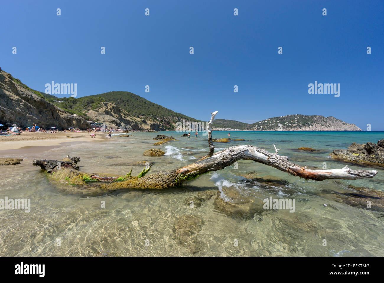 Agua Blanca beach,  Eivissa,  Spain, Baleraric Islands - Stock Image