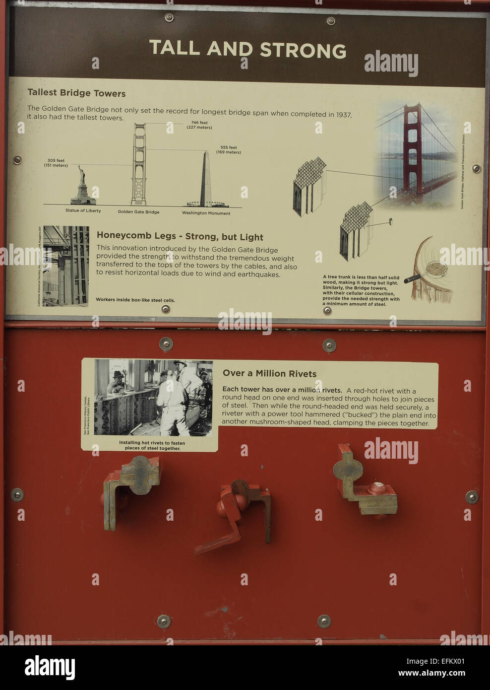 Information board about the cellular construction giving