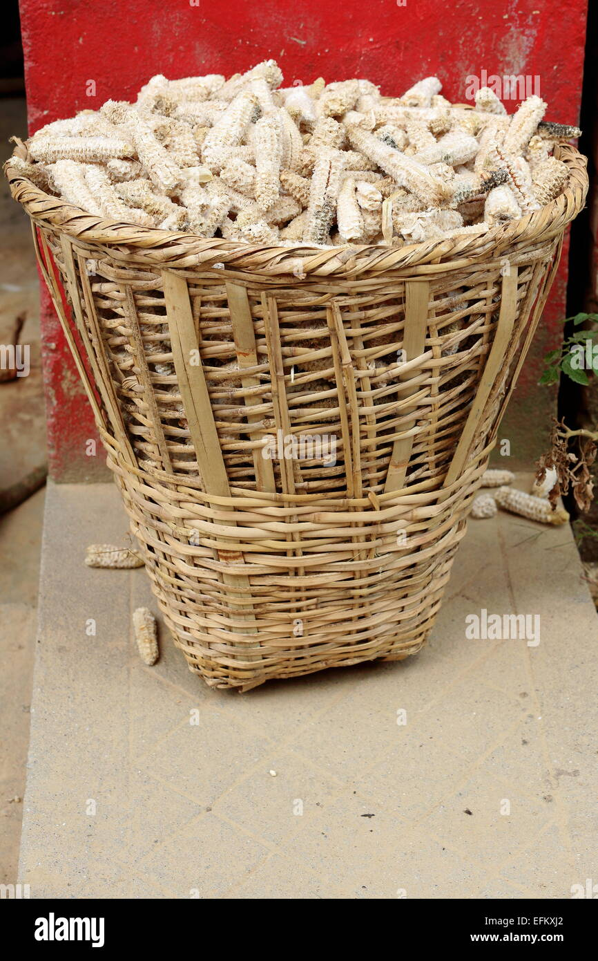 Wicker Basket Replete With Fully Eaten Corncobs In Front Of A Red Stock Photo Alamy