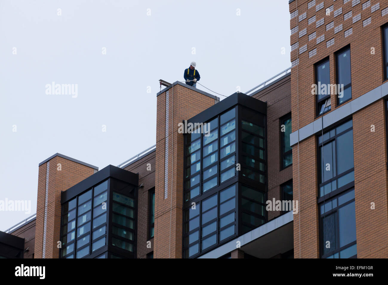 Man working on ledge atop a highrise building - USA - Stock Image