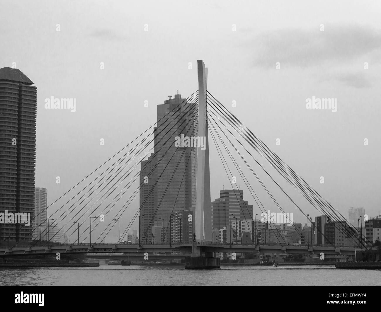 Black and white picture of Sumida river margins with apartment tower and crossing bridge - Stock Image