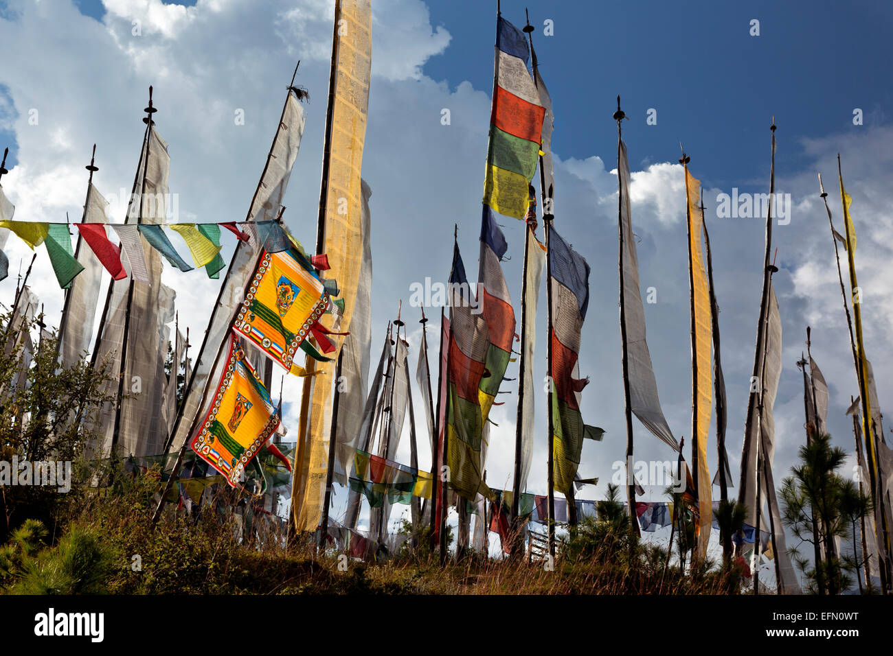 BU00064-00...BHUTAN - Prayer flags from the Sangaygang area above the telecommunications tower. - Stock Image