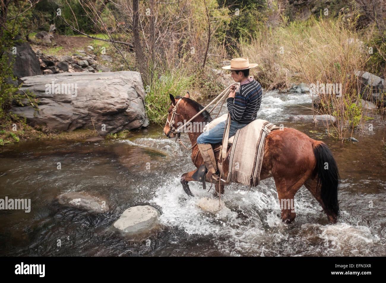 Chilean cowboy (arriero) rides his horse across a river in El Toyo region of Cajon del Maipo, Chile, South America - Stock Image