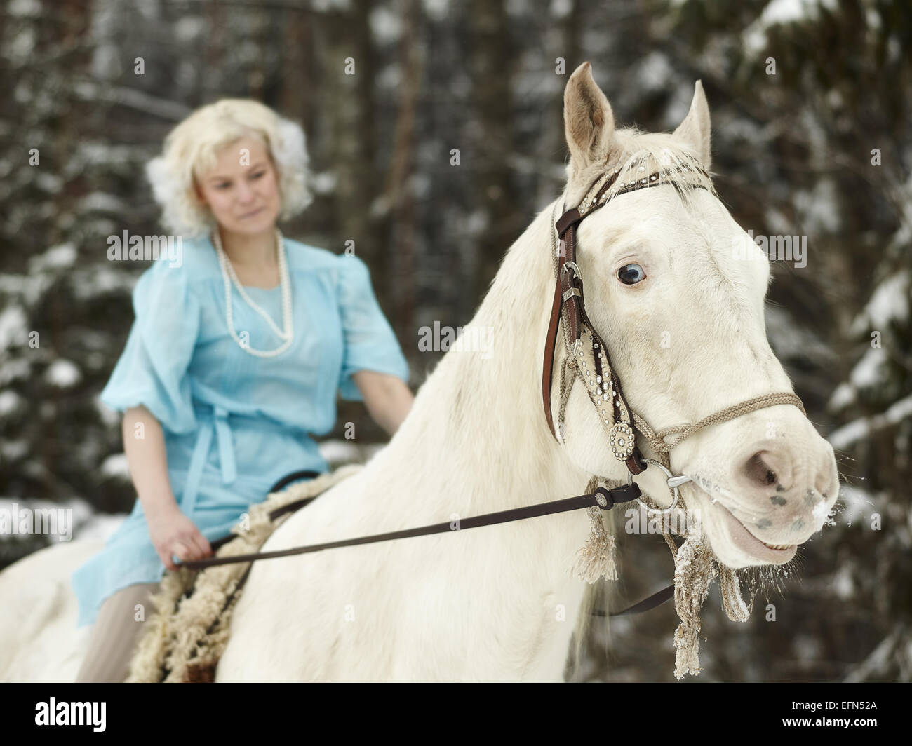 Attractive woman wearing blue dress and she riding a white horse, focus on horse eyes - Stock Image