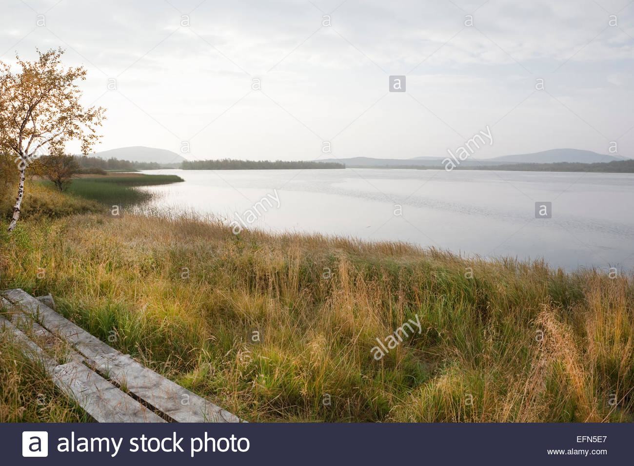 Calm peaceful morning in Finnish Lapland at fall - Stock Image