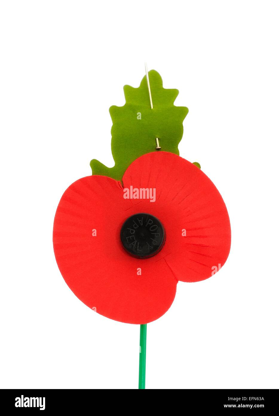 poppy appeal - photo #17