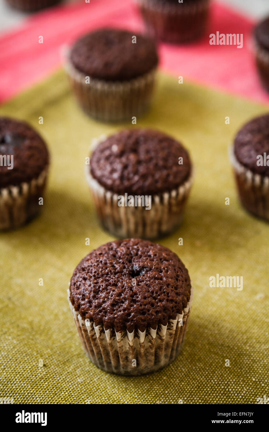 Mini chocolate brownie cupcakes on colorful background - Stock Image