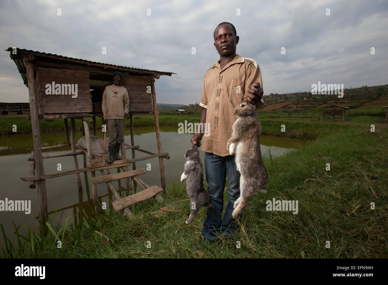Rwandan farmers show off domestic rabbits outside their hutches which sit over a fishpond, Rwanda Stock Photo