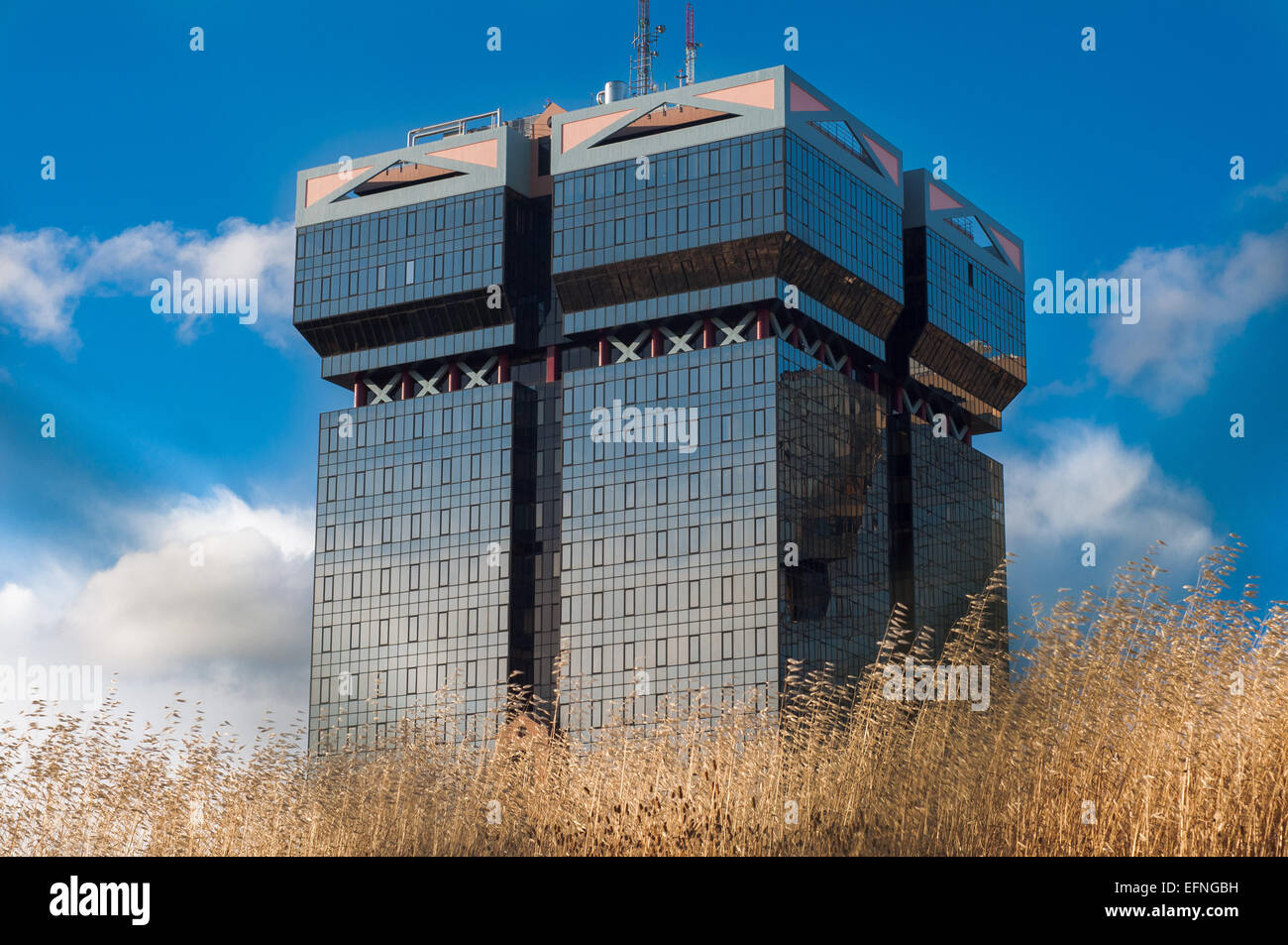 Big and squared skyscraper over a hayfield - Stock Image
