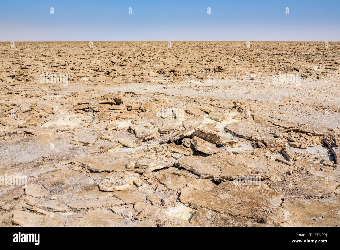 Salt mine in Danakil Depression desert in Ethiopia - Stock Image