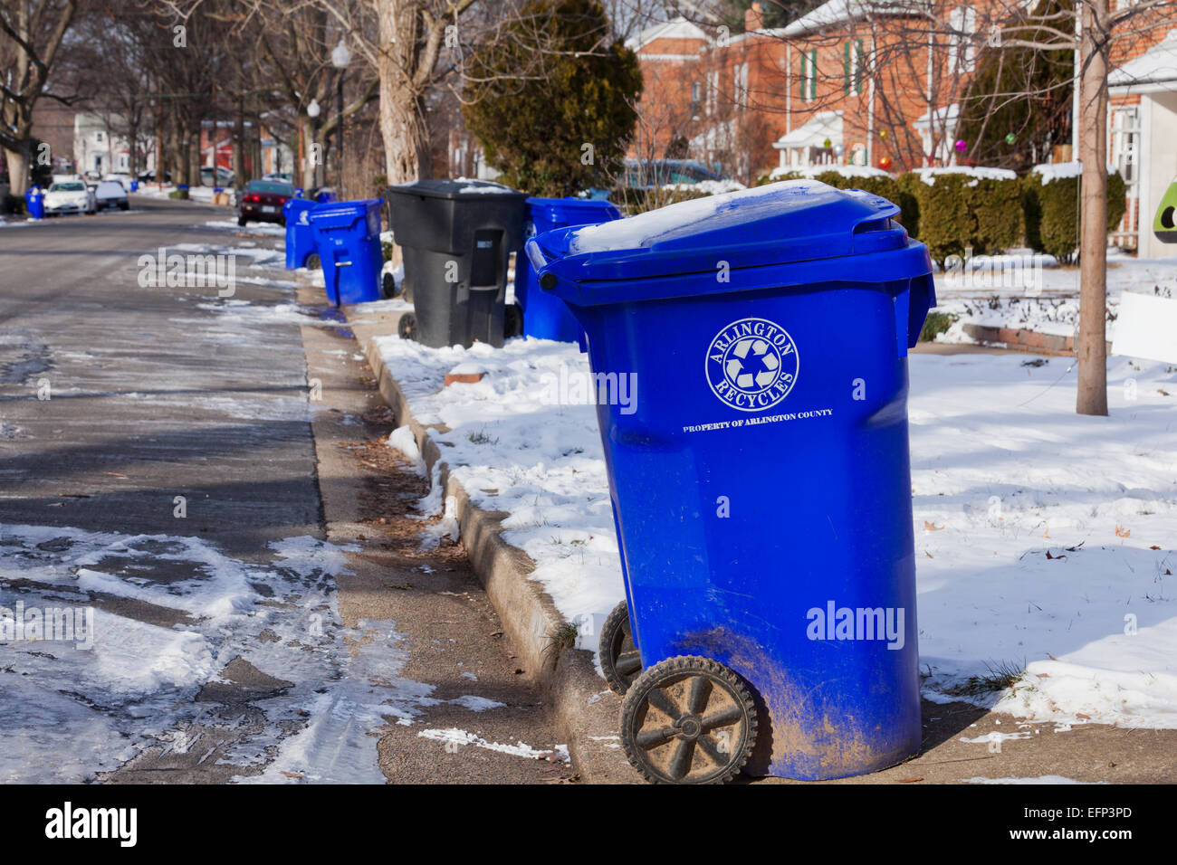 Recycling bins out for pickup - USA Stock Photo