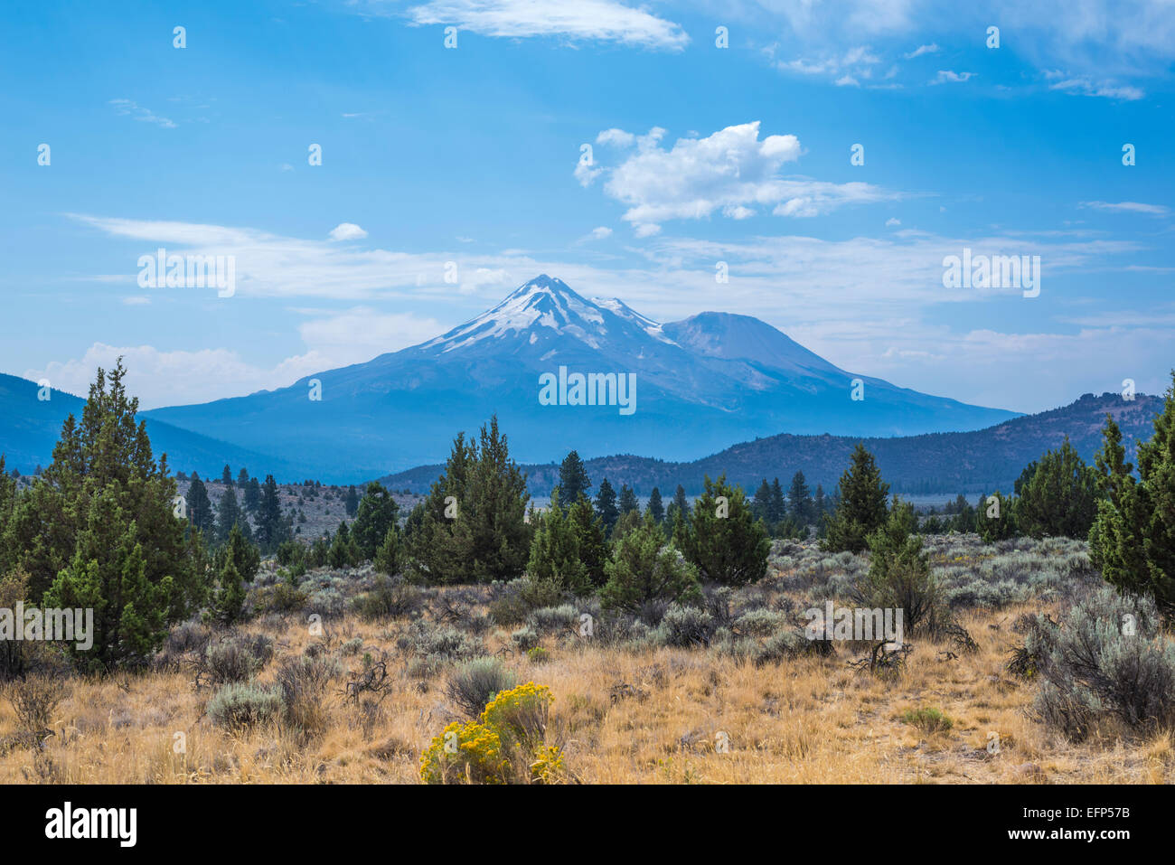 View of Mount Shasta. Siskiyou County, California, United States. - Stock Image
