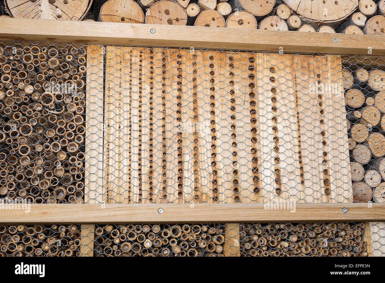 Leaf Cutter Bee Hives (megachilids) Monte Carlo Monaco - Stock Image