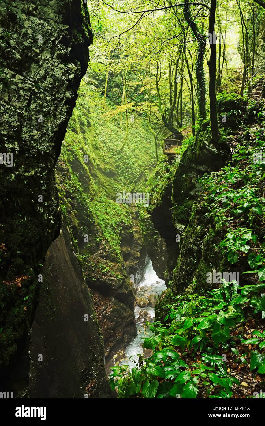 Tolmin Gorge, Tolmin, Slovenia, Europe - Stock Image