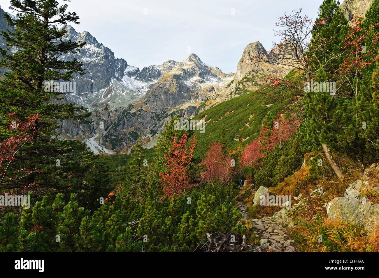 High Tatras (Vysoke Tatry), Slovakia, Europe - Stock Image