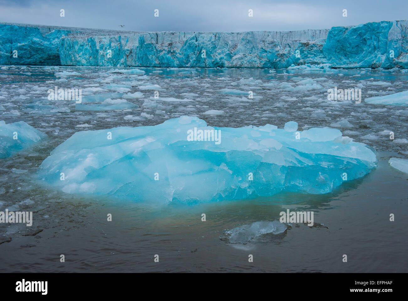 Shining blue glacier ice, Hornsund, Svalbard, Arctic, Norway, Scandinavia, Europe - Stock Image