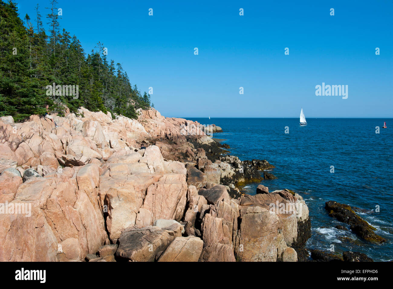 Sailing boat at the rocky cliffs of Bass Harbor Head Lighthouse, Acadia National Park, Maine, New England, USA - Stock Image