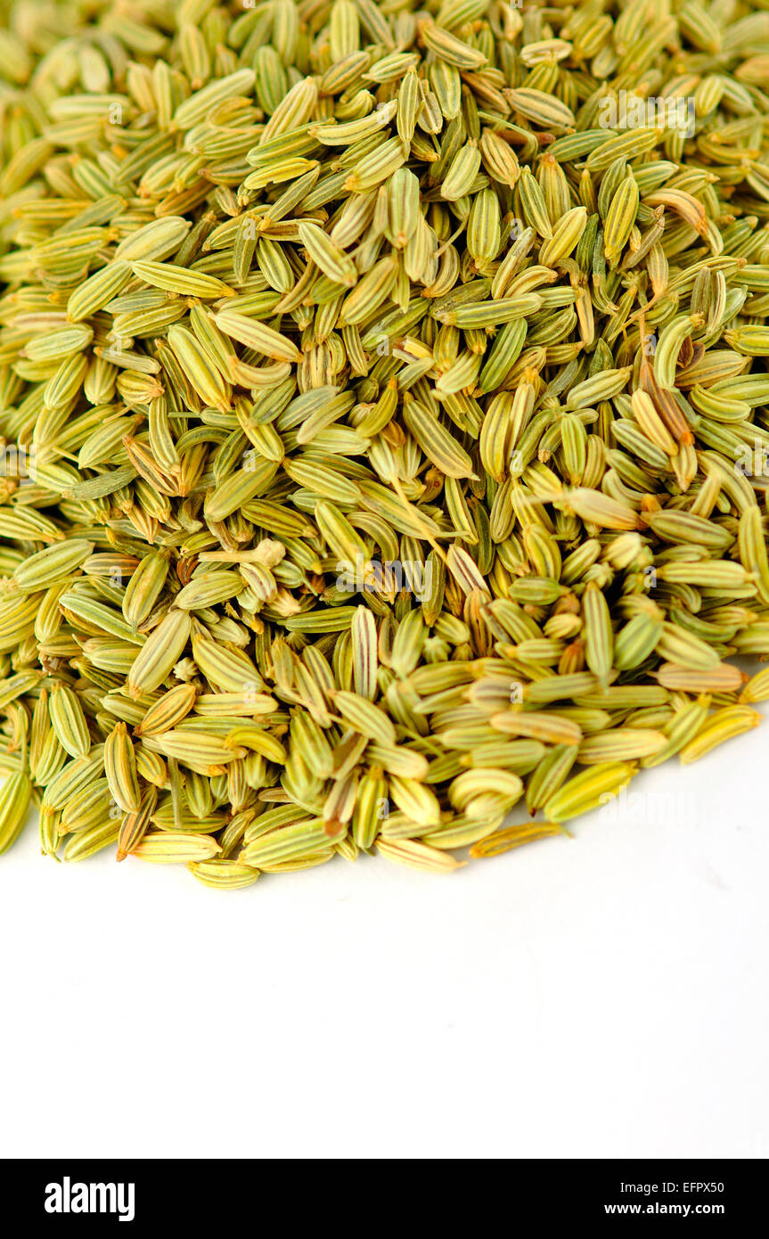 Fennel Seeds - Stock Image