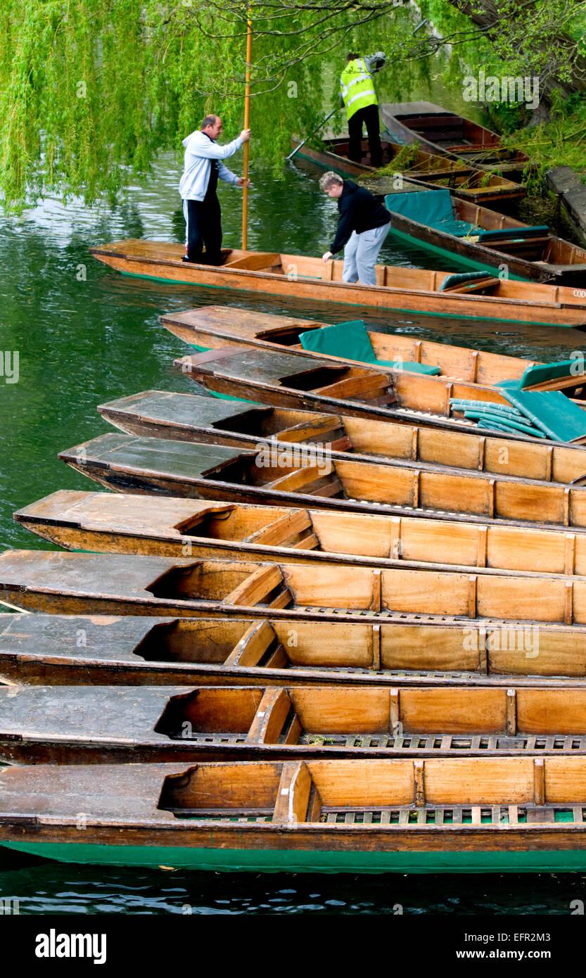 Cambridge, England, UK. Punts on the river Cam - Stock Image
