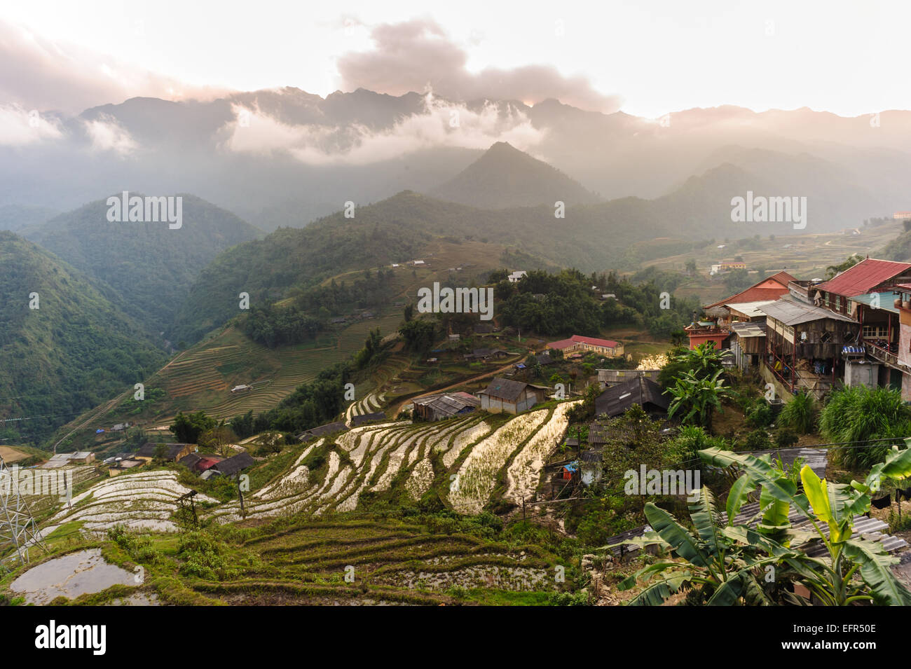 Sunset at terraced of  Cat Cat Village, Sapa Vietnam. - Stock Image