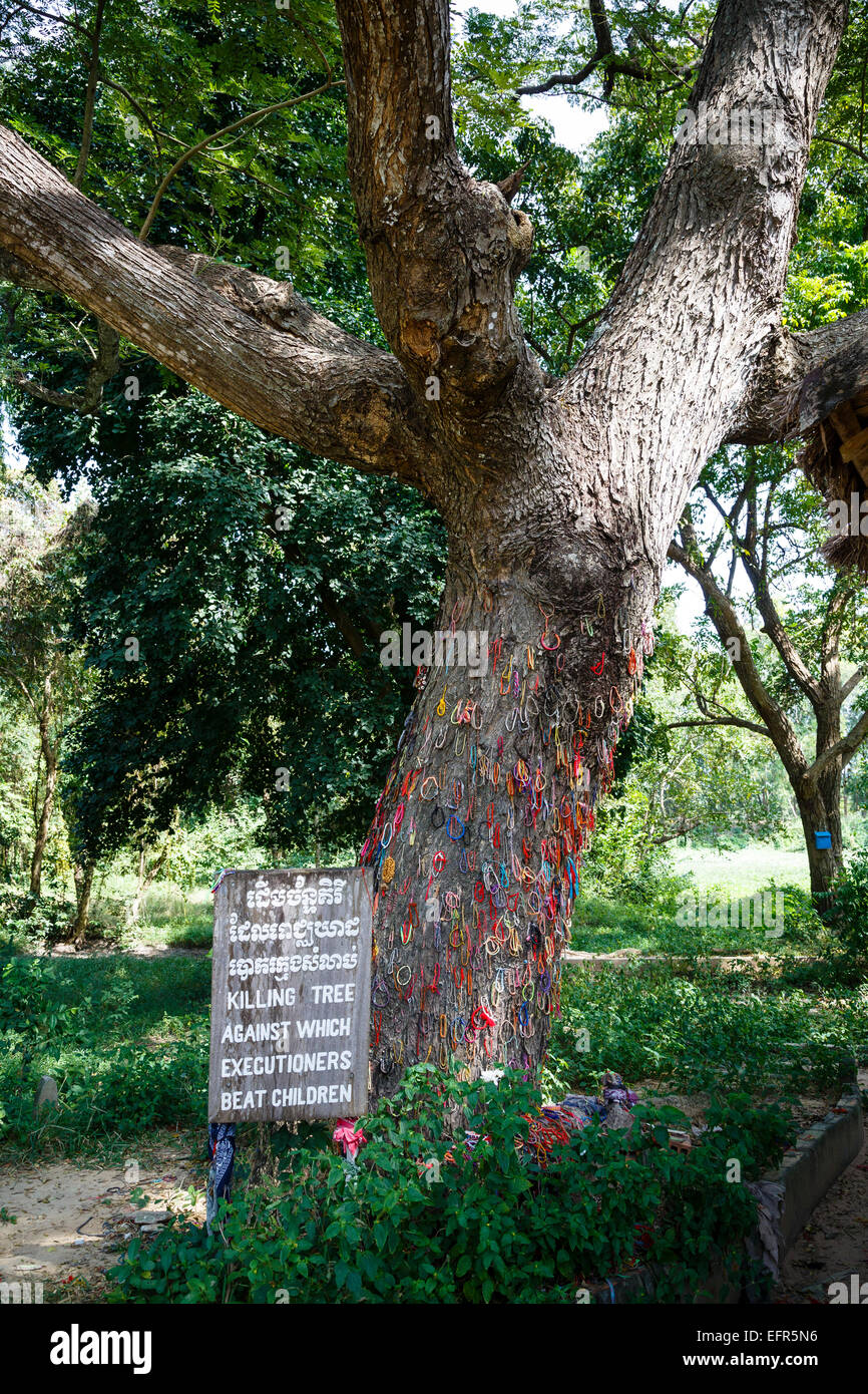 The tree against which the executioner beat children, Killing fields, Phnom Penh, Cambodia. - Stock Image