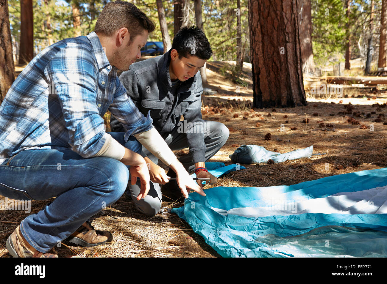 Two young men preparing to camp in forest, Los Angeles, California, USA Stock Photo