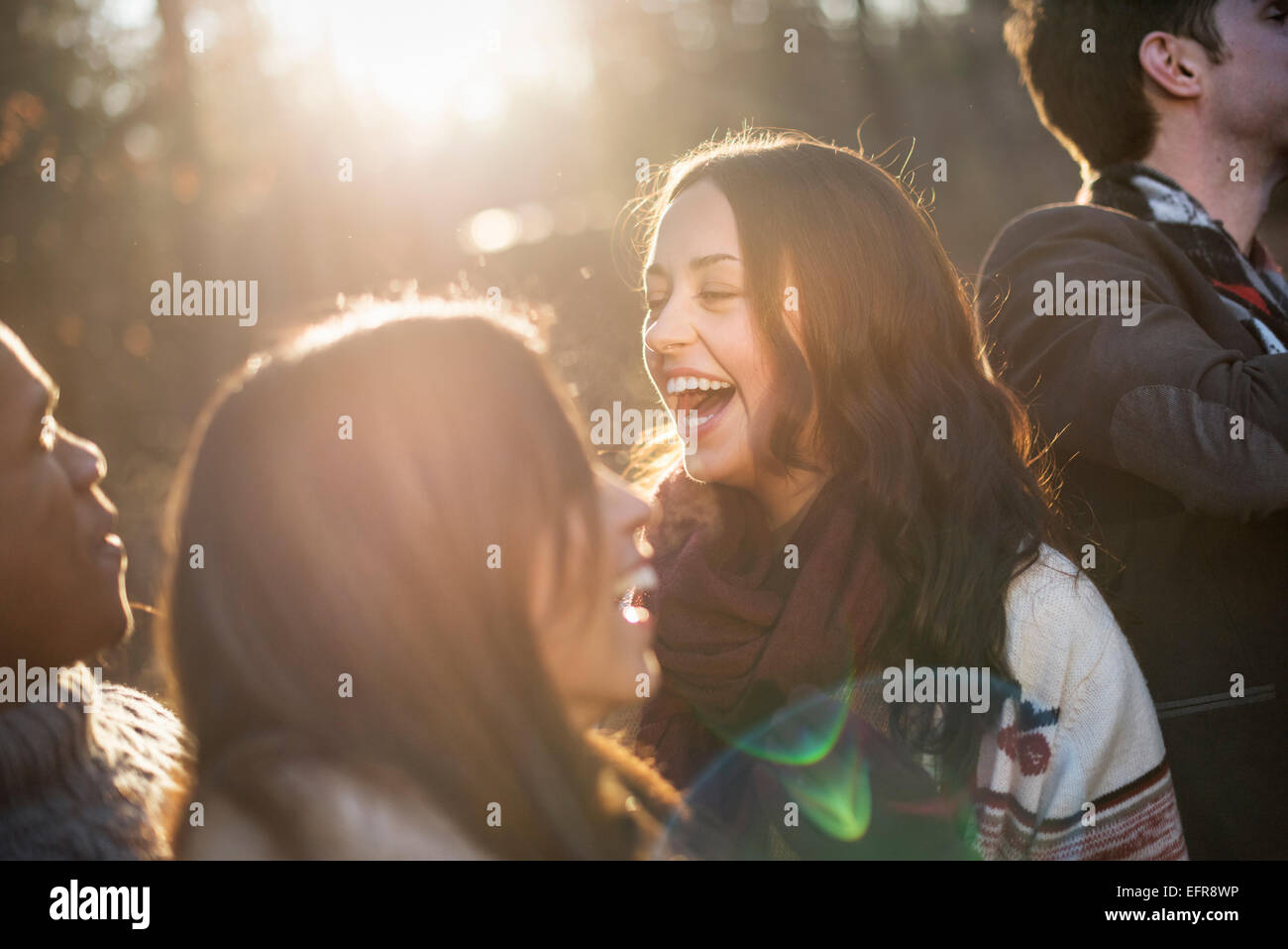 Smiling group of friends standing in a sunlit forest in autumn. - Stock Image