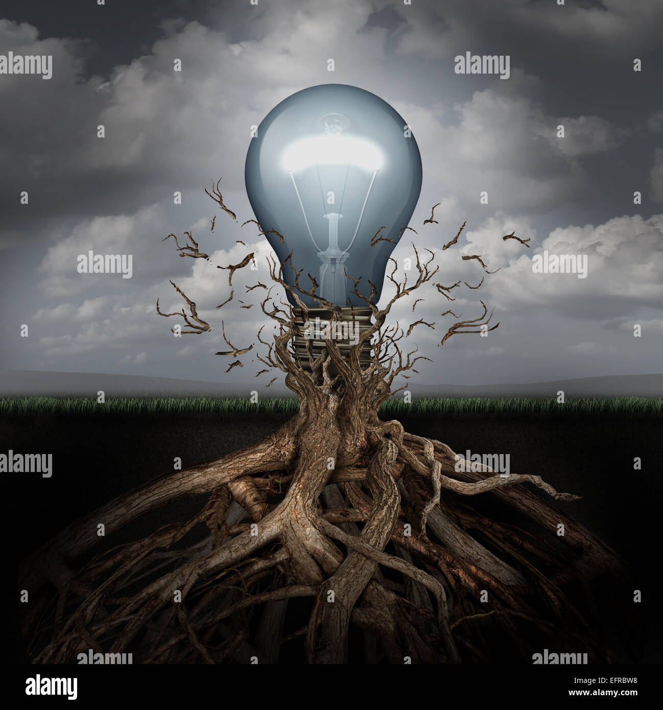 Concept of creativity and the rise of ideas as a light bulb emerging out from underground roots breaking free from - Stock Image