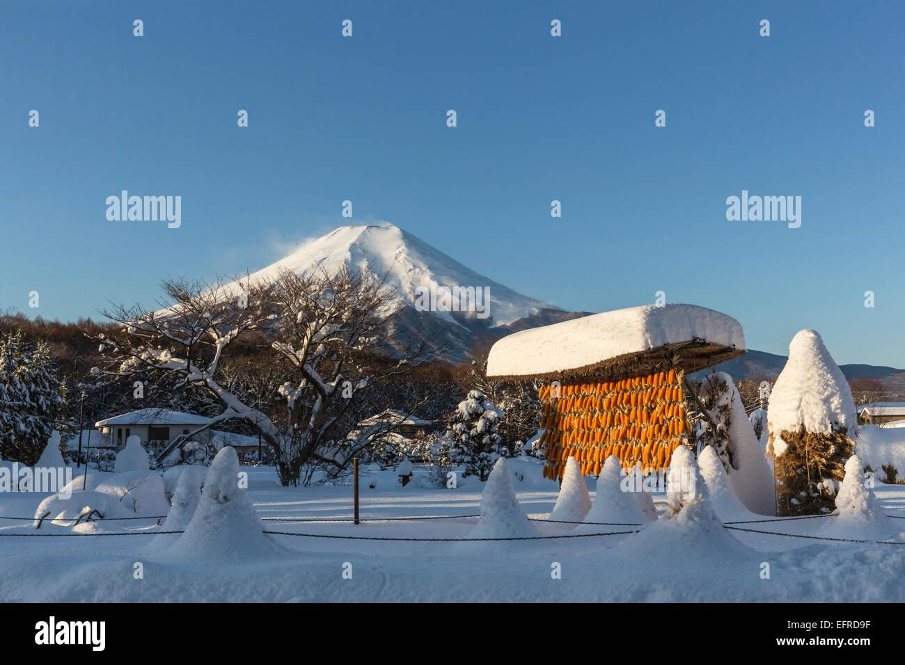 Mount Fuji and Snowfield, Yamanashi, Japan - Stock Image