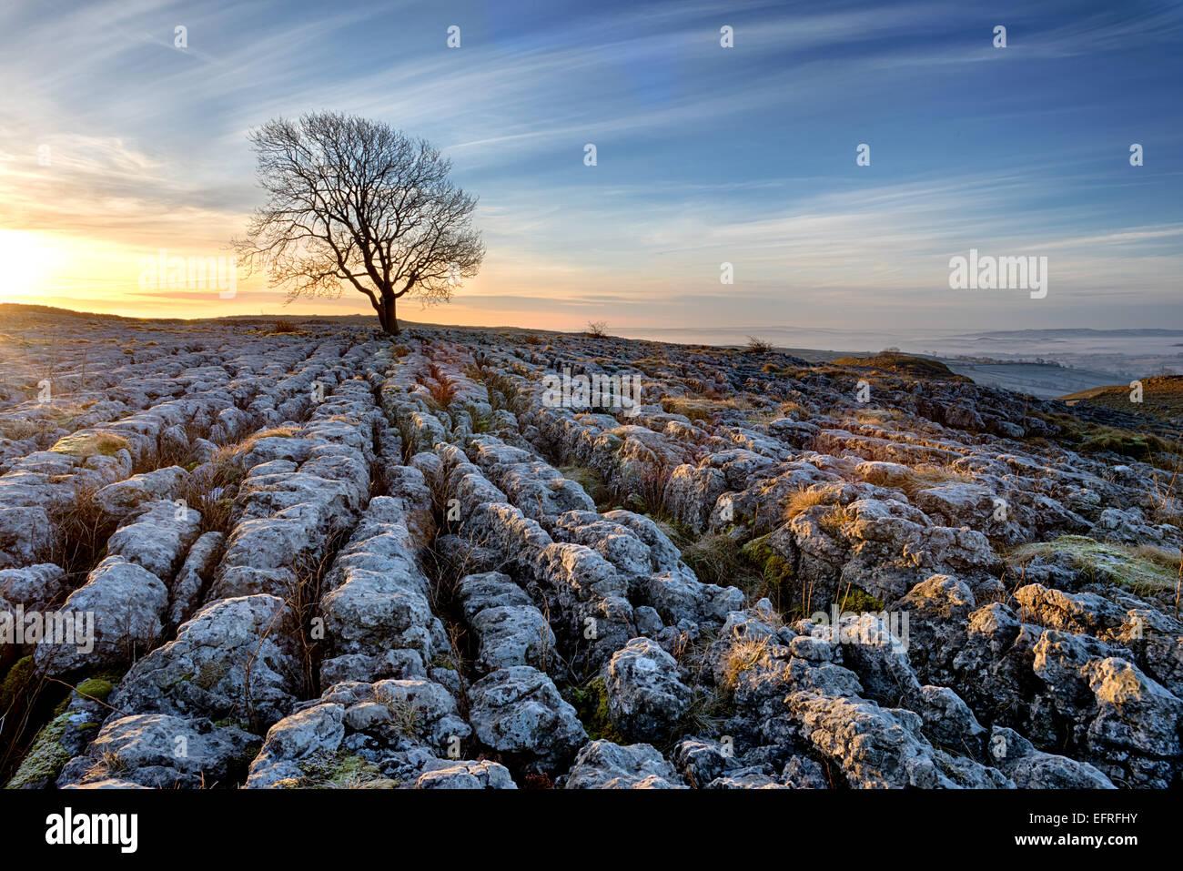 Limestone Pavement, Malham, Yorkshire Dales, England, UK - Stock Image