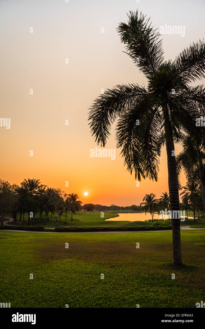 Beautiful golf course during sunset for background - Stock Image