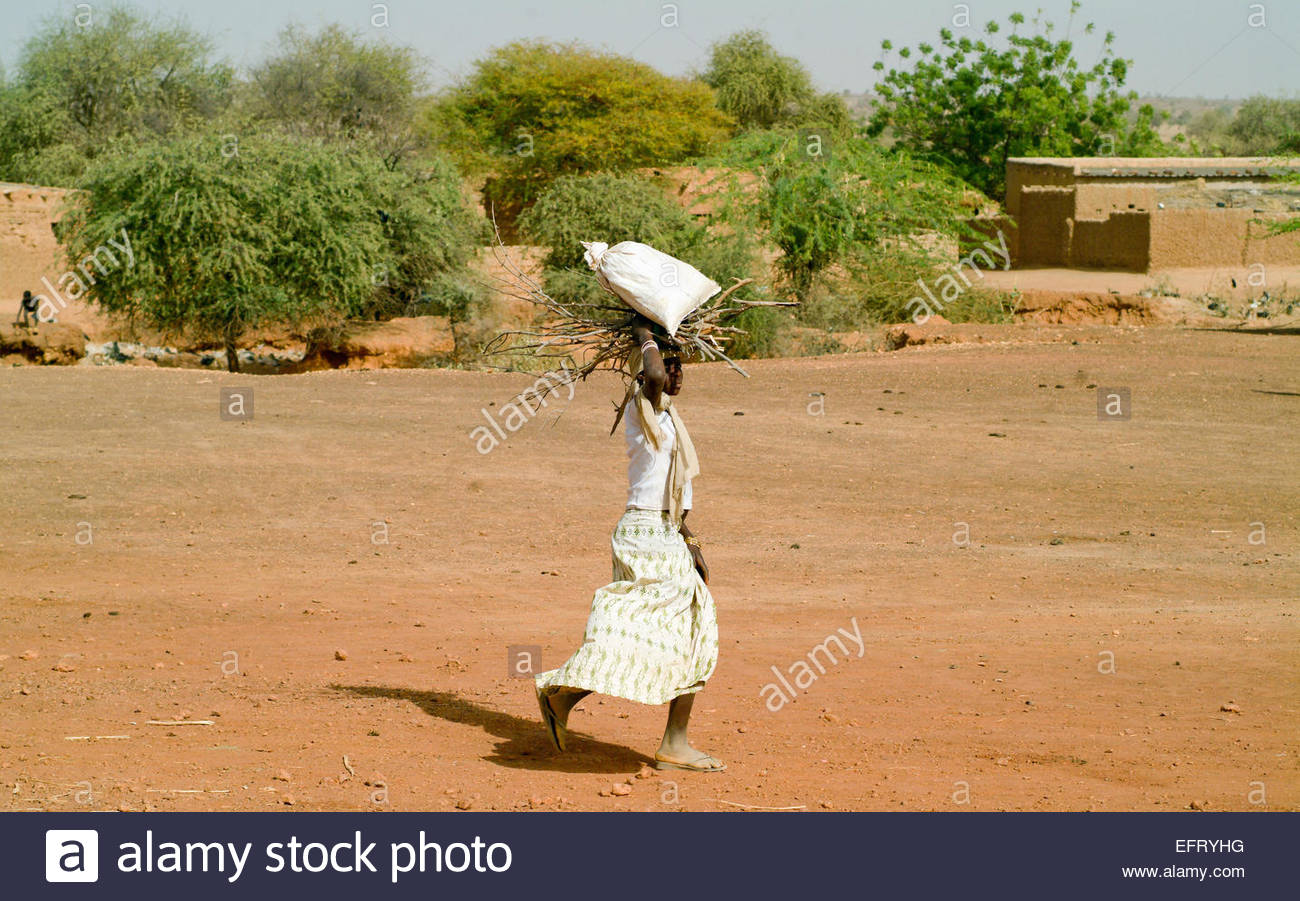 Republic Of Niger NER Western Africa Sahara Desert 2007 People Person Farming Agriculture Working - Stock Image