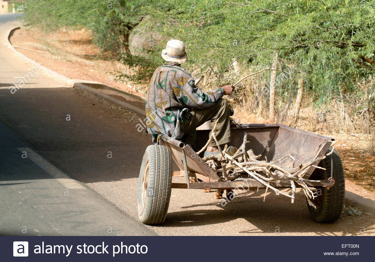 Republic Of Niger NER Western Africa Sahara Desert 2007 People Person Farming Agriculture Working Pulling Cart - Stock Image