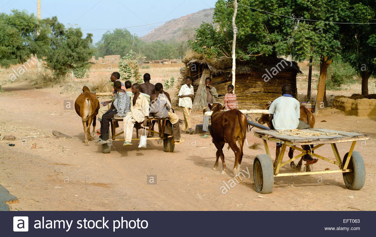 Republic Of Niger NER Western Africa Sahara Desert 2007 People Person Farming Agriculture Pulling Cart - Stock Image