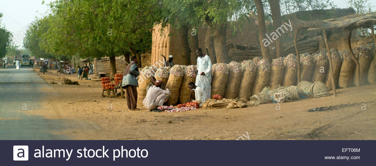 Niger Republic Of Niger NER Western Africa Sahara Desert 2007 People Person Farming Agriculture Shop Store Shopping - Stock Image
