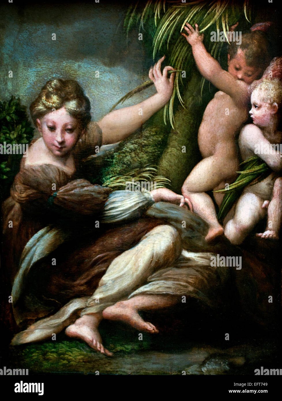 Female Martyr with Angels 1523 Girolamo Francesco Maria Mazzola ( Francesco Mazzola , Parmigianino ) Italy Italian - Stock Image