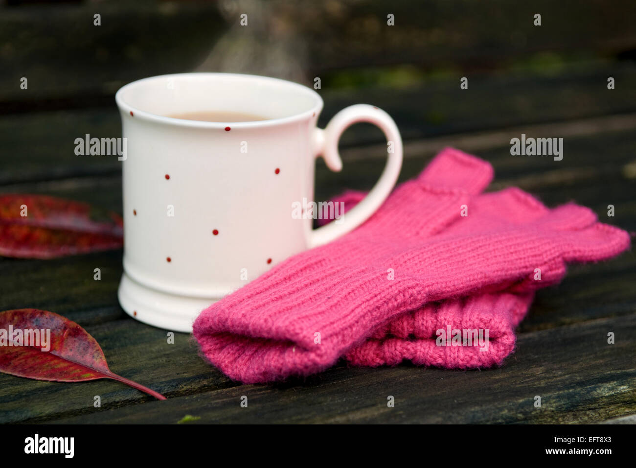 Steaming cup of tea with knitted gloves and autumn leaves on bench in garden on a cold winters day - Stock Image