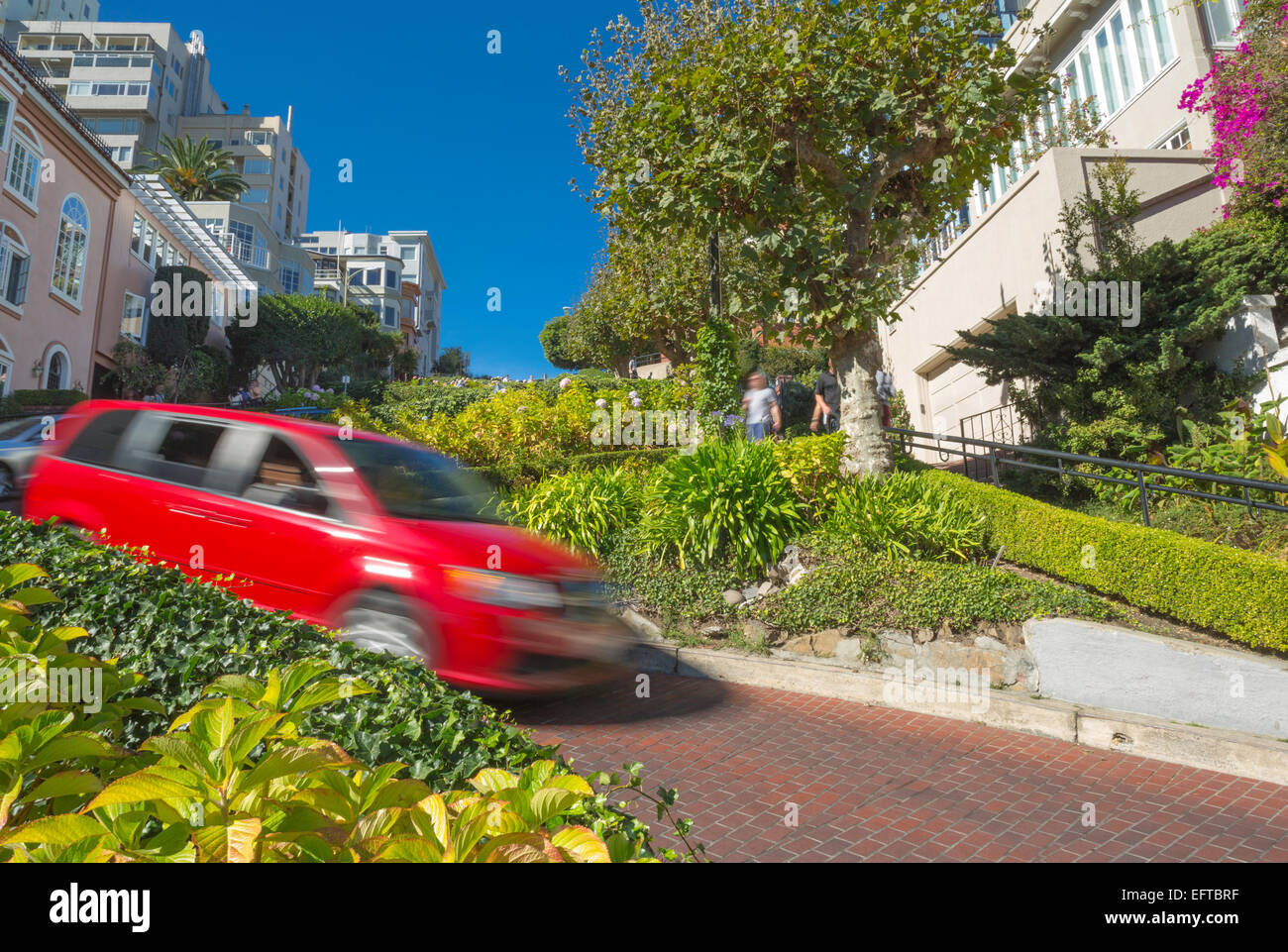 BLURRED AUTO TRAFFIC LOMBARD STREET RUSSIAN HILL DISTRICT SAN FRANCISCO CALIFORNIA USA - Stock Image