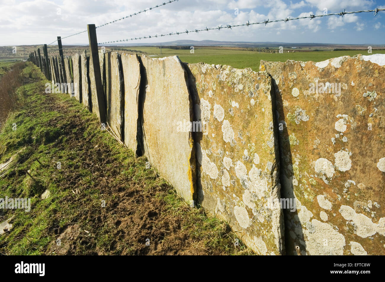 Traditional Caithness drystane dyke using flat sandstone 'flags'. - Stock Image