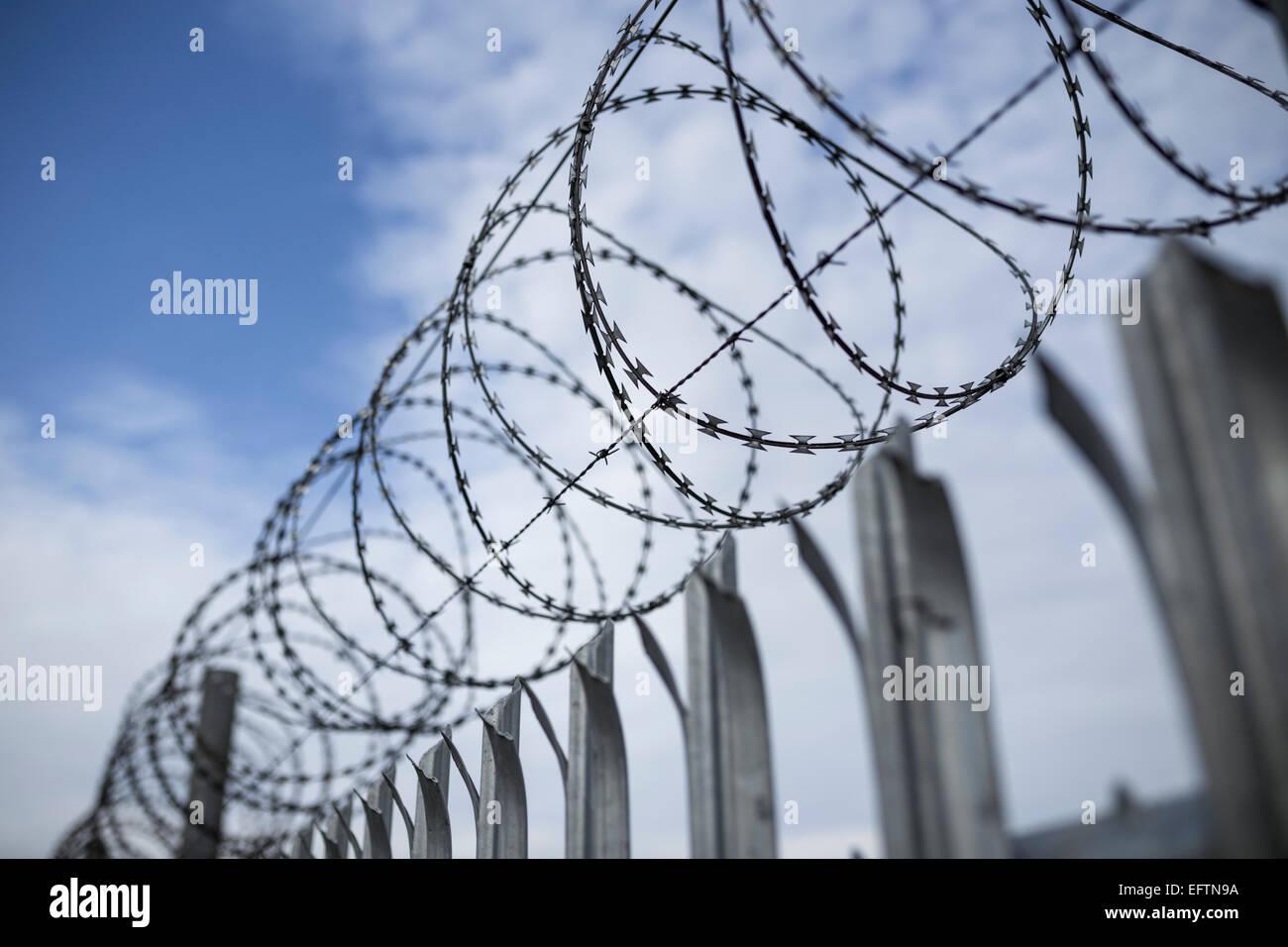 Razor Wire Fence Stock Photos & Razor Wire Fence Stock Images - Alamy