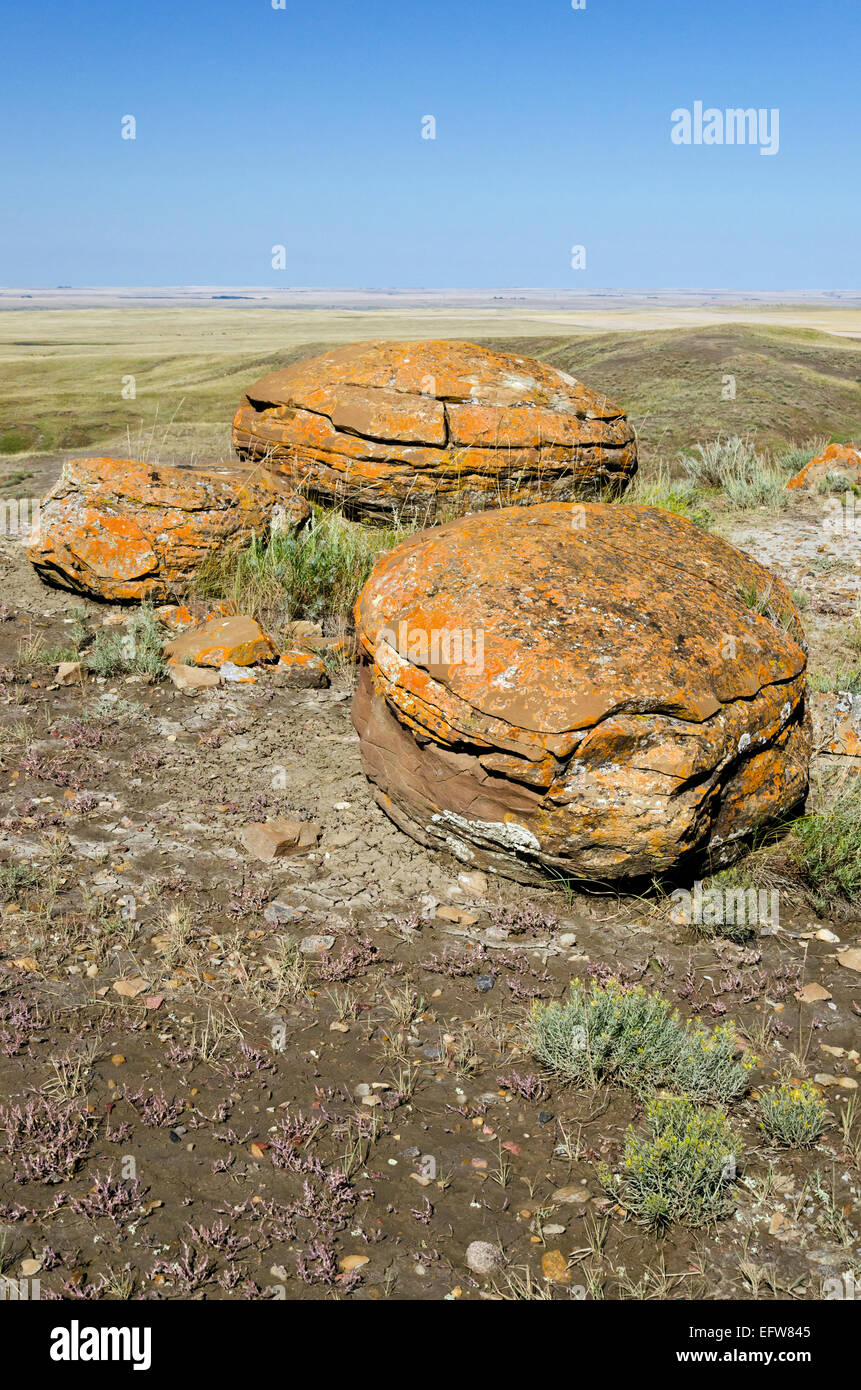 Three spherical sandstone concretions at Red Rock Coulee Provincial Park, near Medicine Hat, in southern Alberta, - Stock Image