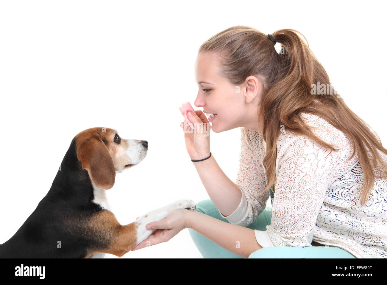 dog obedience training trainer with pet. - Stock Image