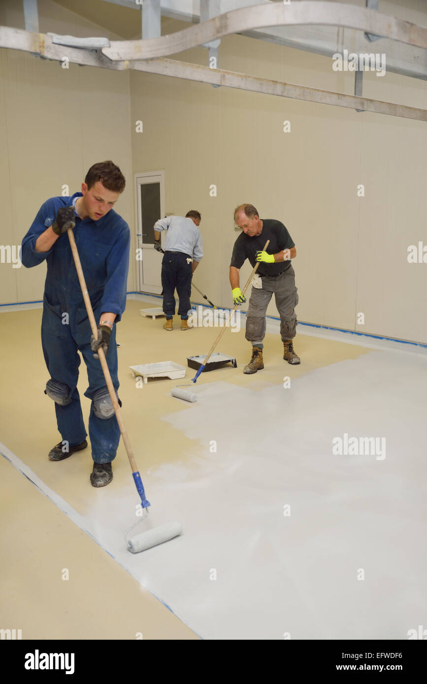 Three tradesmen roll a second coat of tinted epoxy product on the floor of an industrial building - Stock Image