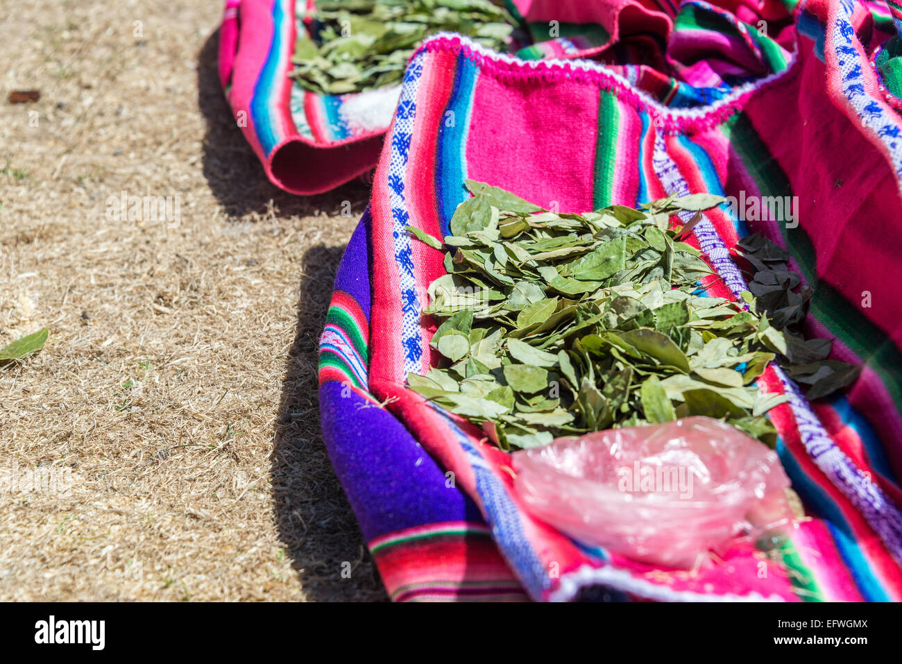 Coca leaves resting on colorful traditional fabric on Island of the Sun on the Bolivian side of Lake Titicaca - Stock Image